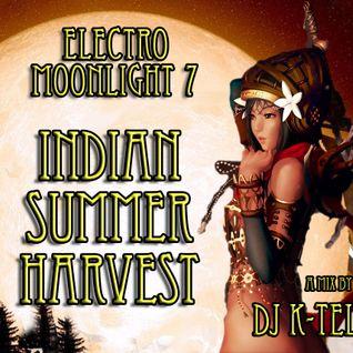 DJ K-Tel Electromoonlight 7 - Indian Summer Harvest Moon
