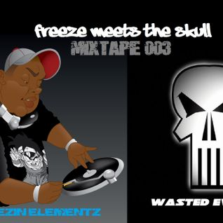 Freeze Meets The Skull - Mixtape 003