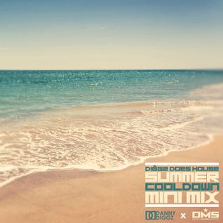 "DMS MINI MIX WEEK #232 DIGGZ DOES HOUSE - ""SUMMER COOLDOWN"""