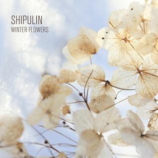 Shipulin - Winter flowers