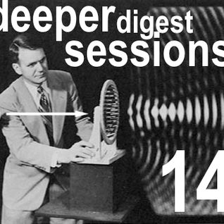 Deeper Digest Sessions Vol.14 Special Dogglounge Guest Mixset by DubC Human touch Mix
