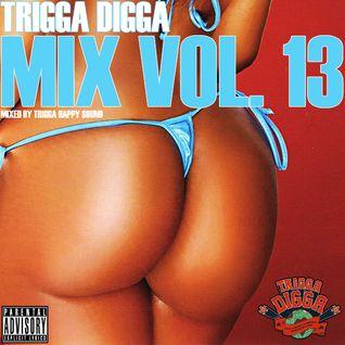 TRIGGA DIGGA MIX VOL. 13