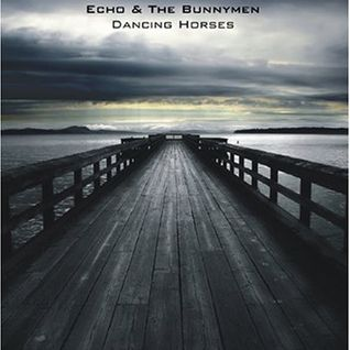 Echo & The Bunnymen - Dancing Horses - The Shepherds Bush Empire LIVE (2005)
