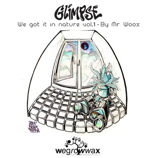 Glimpse : We Got it in Nature vol.1 -  by Mr.Woox