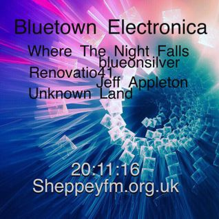 Bluetown Electronica live show 20.11.16