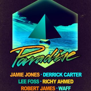 Richy Ahmed @ The BPM Festival 2014 - Paradise,Coco Maya (08-01-14)