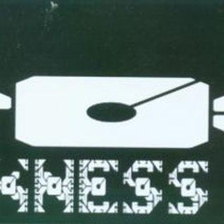 K9 Soundsystem der Engländer @ K-- Preschen 13.07.2002