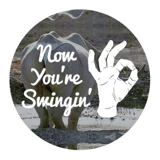 Now You're Swingin' - Episode 10b 'Love Rhino' Special