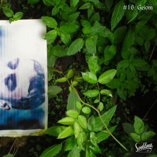 #16: Geiom