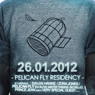 Dj Slow - Pelican Fly Party #1 Promo Mix (January 2012)