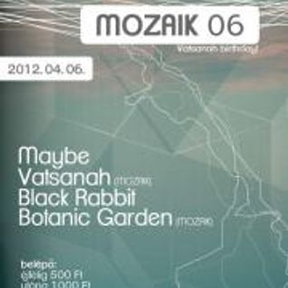 Live @ Trafo Club 'MOZAIK 06 Vatsanah birthday (2012. 04. 06.) Fixed