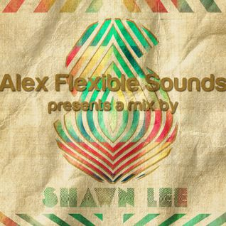 SHAWN LEE MIX FOR 'FLEXIBLE SOUNDS' ON WWW.CANNIBALRADIO.COM
