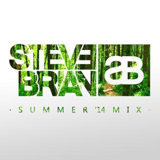 Steve Brian - Summer '14 Mix