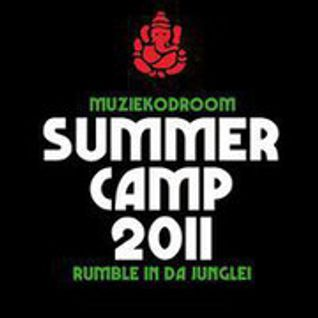 Primate - Summer Camp 2011 Artist mix