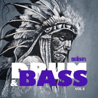 Various Artists - Straight Up Drum n Bass Vol 5 (Album MegaMix)