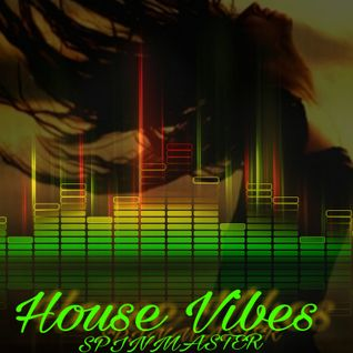 DJ SPINMASTER - HOUSE VIBES
