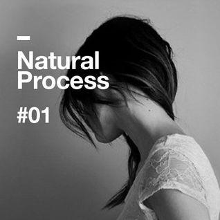 Natural Process #01