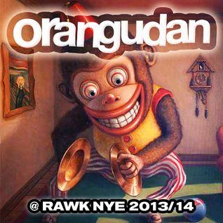 Orangudan @ RAWK NYE 2013/14 [ROWDY GLITCH, BITCH]