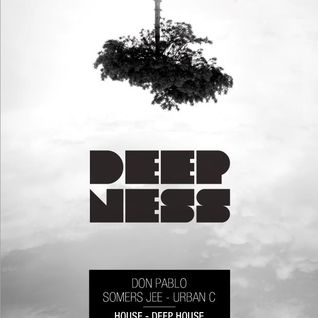 Don Pablo @ DeepNess - 26th April 2013 - Escobar (Mons, BE.)