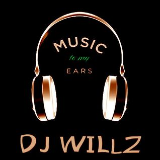 DJ Willz - Music 2 My Ears