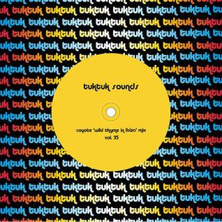 tuktuk sounds vol. 35 | coyote 'wild thyme in ibiza' mix