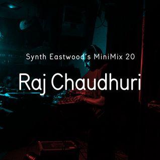 SE Minimix 020 - Raj Chaudhuri