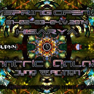 Witness To The Nagual - Mantric Galaxy (psYspRing Open Air 2014)