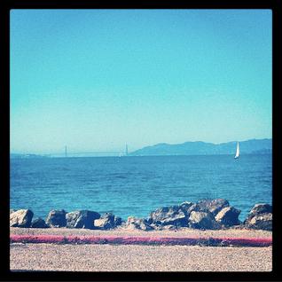 SF January '13