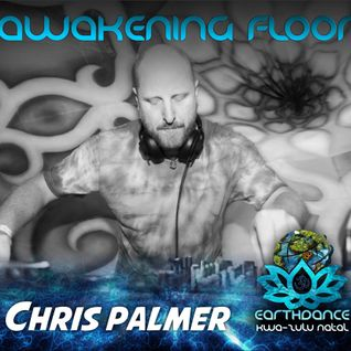 Chris Palmer Earthdance KZN Psy