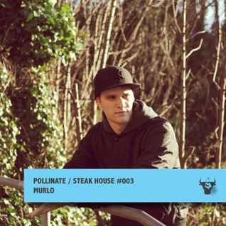 Pollinate / Steak House #003 - Murlo