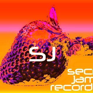 SECRET JAMS VOL .01 - MIXED BY DANNY L