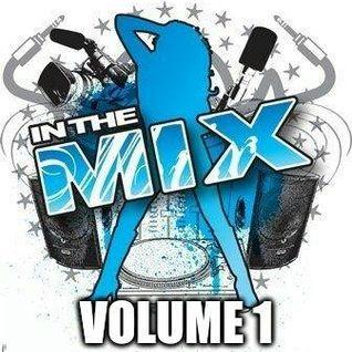 Dj Vinyldoctor - In The Mix - Volume 1