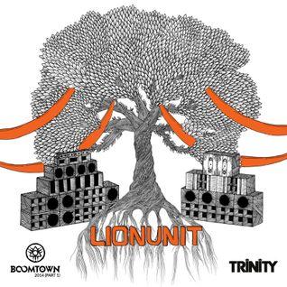 Lion Unit @ Boom Town Fair 2014 - Tangled Roots (Part 1)