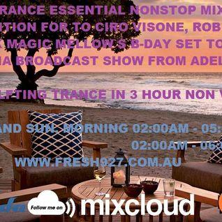 DJ Ravemaster - Summer Trance Essential Nonstop Mix Vol.12