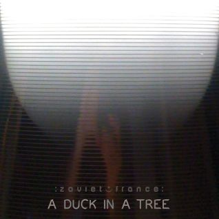 A Duck in a Tree 2013-11-30 | The Extraordinary Rendition of Heaven