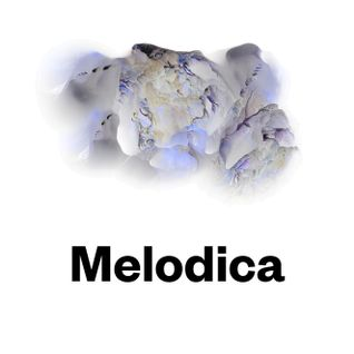 Melodica 10 October 2016 (with Rich Ears at Santos, Ibiza pt2)