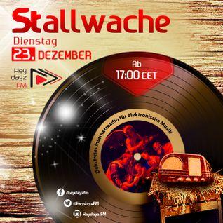 Stallwache @ Heydayz FM mixed by Mina Ralwasser