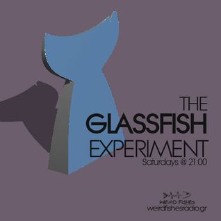 The GlassFish Experiment 1 - The Steams