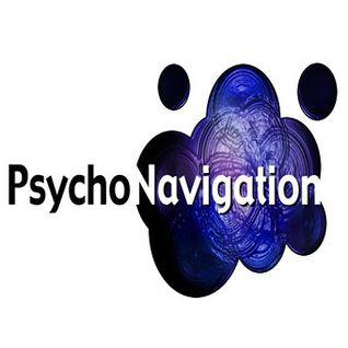 Psychonavigation Records : Best of 2014 Mix