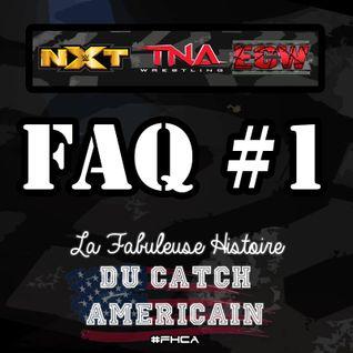 La Fabuleuse Histoire du Catch Américain - FAQ #01