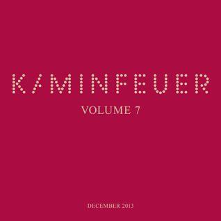 Kaminfeuer Vol.7