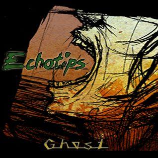 Echotips