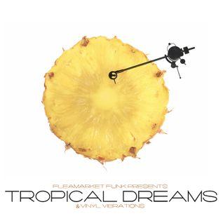 Tropical Dreams & Vinyl Vibrations
