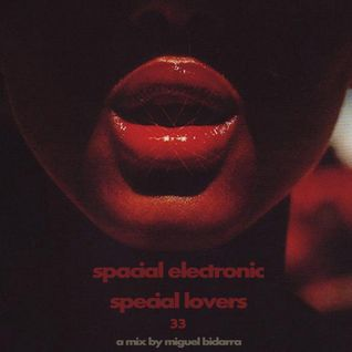 S.E.S.L. (Spacial Electronic Special Lovers) #33