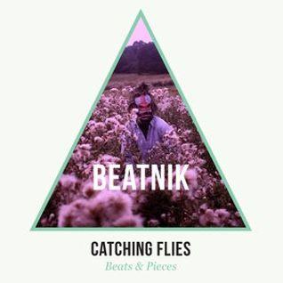 Beats & Pieces Mix for Beatnik