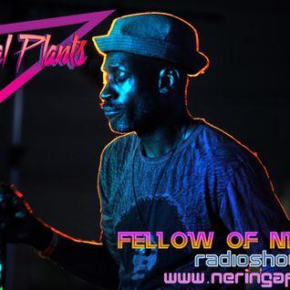Fellow of Neringa: Mystical plants 2016.04.06