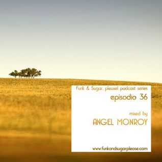 Funk & Sugar, Please! podcast 36 by Angel Monroy
