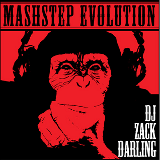 The Mashstep Evolution Vol. 1