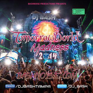 DJ Bash - TomorrowWorld Madness 2014