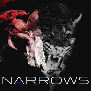 L'Oeil du Kong: Narrows